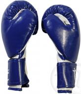 Перчатки боксерские AbCh Absolute Champion, синие, 12 унц.